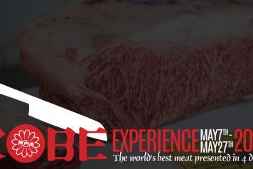 WEBSITE BLOG KobeExperience 1200x500ppi